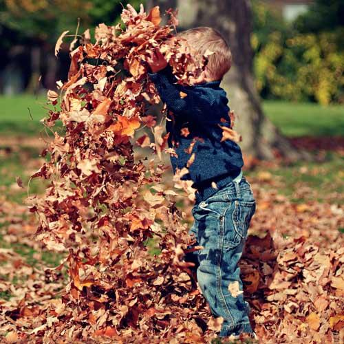 Der Wanderfuehrer Kind spielt mit Laub