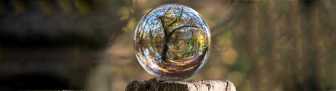 Wald und Erlebnispaedagogik